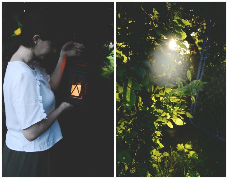 lanternforest